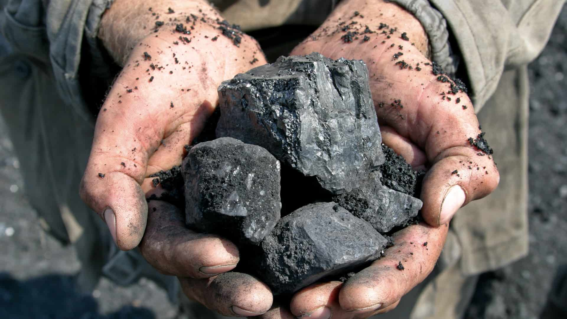 A miner holds two hands full of coal, indicating share price movement for coal and energy companies