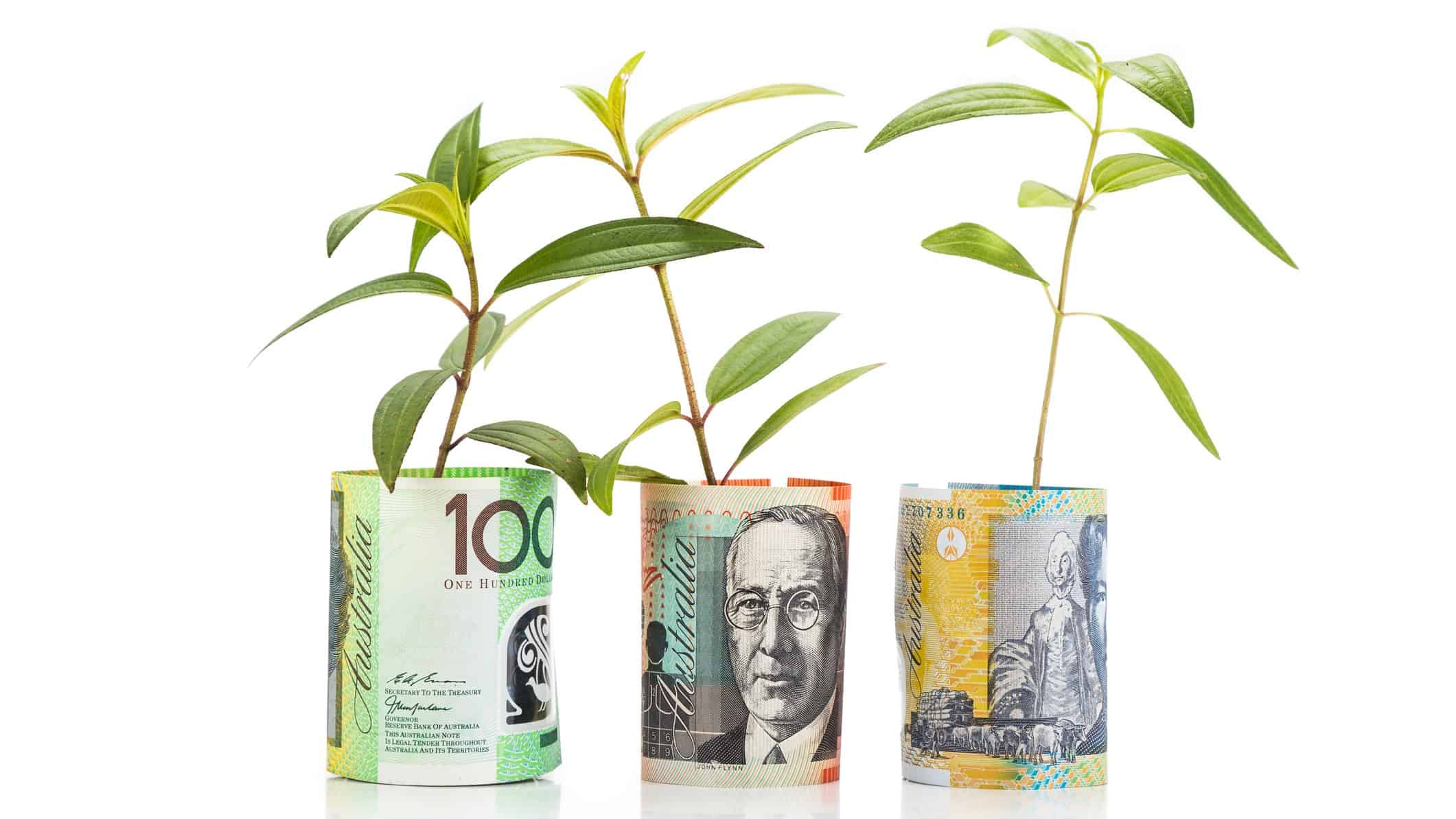 seedling plants growing out of rolls of money representing dividend shares