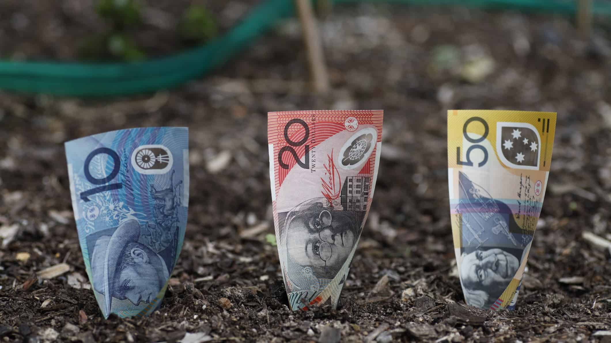 $10, $20 and $50 noted planted in the dirt signifying asx growth shares