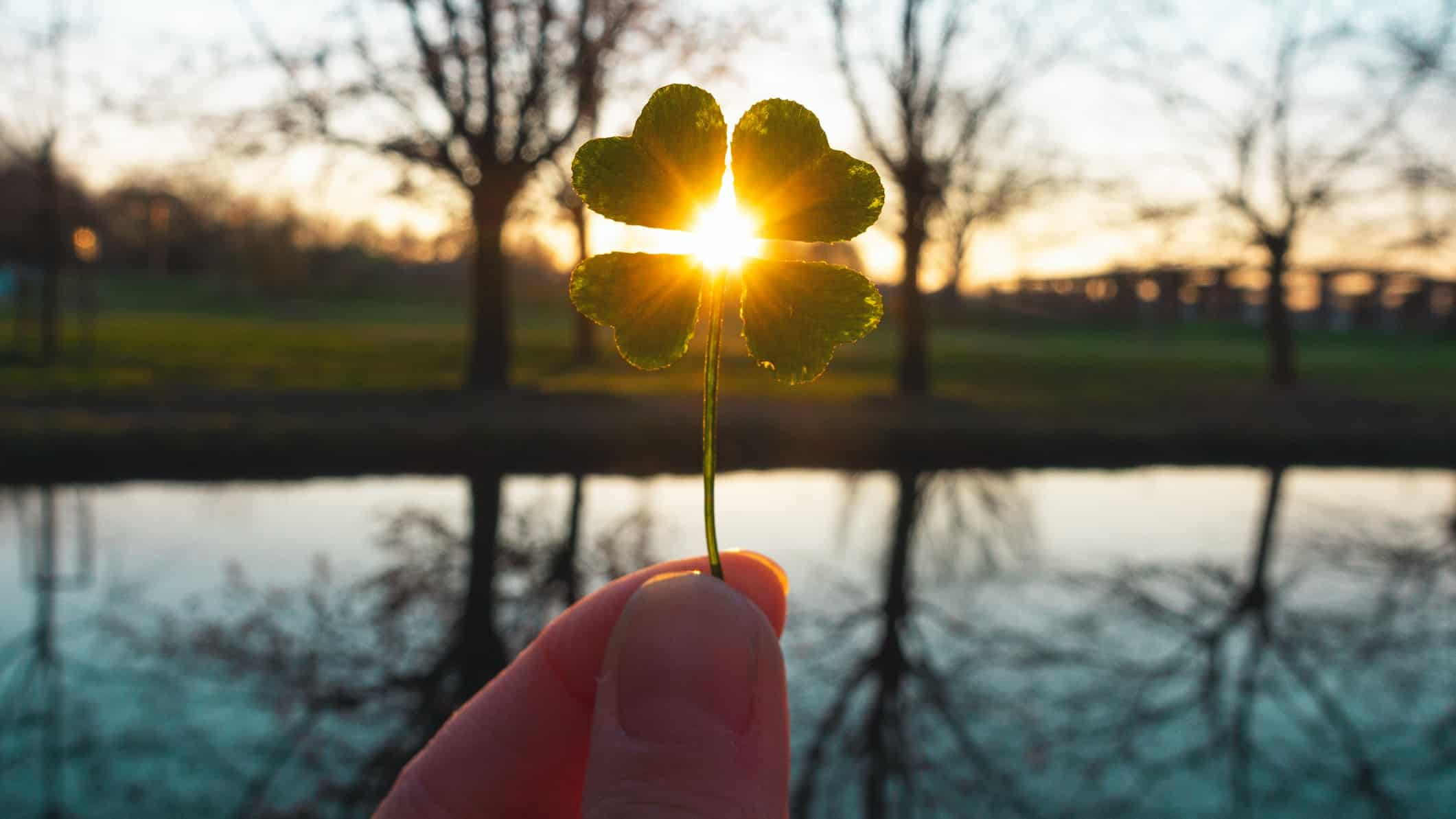 hand holding four leaf clover against backdrop of sun setting over lake