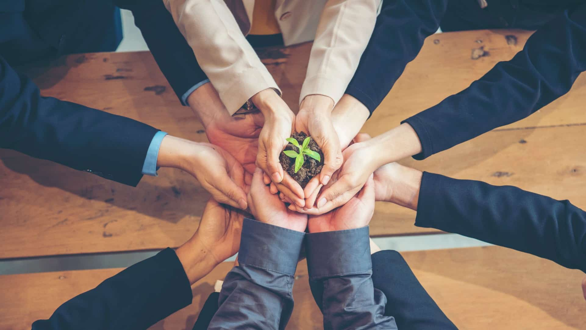 A circle of hands from business leads cupping a green leaf in soil, indicating ASX companies embracing the concept of ESG and sustainable business practices