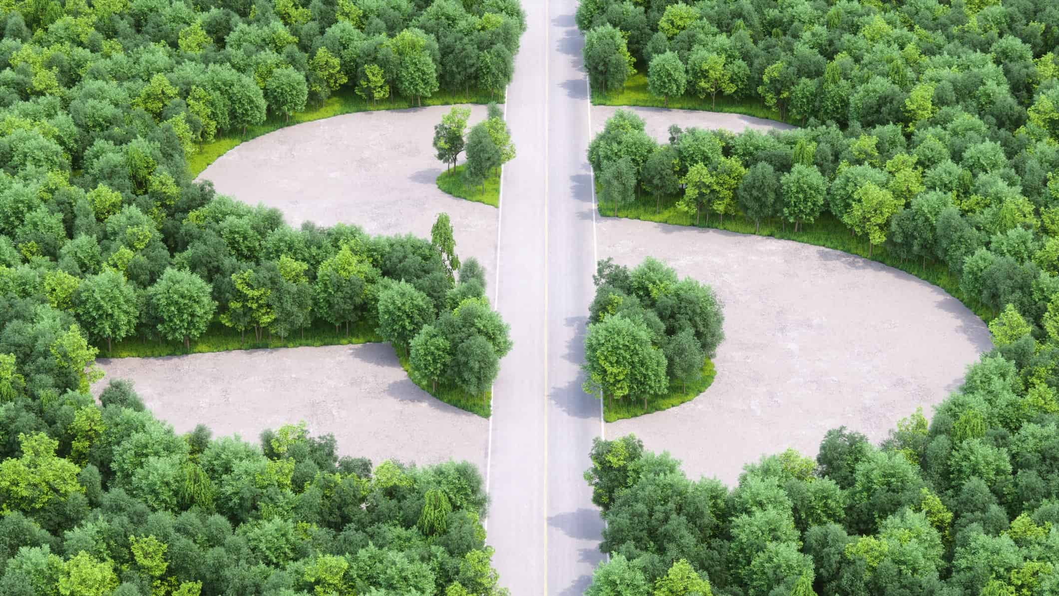 Trees and a road shapes a dollar sign of green, indicating the share price movement of ASX eco companies