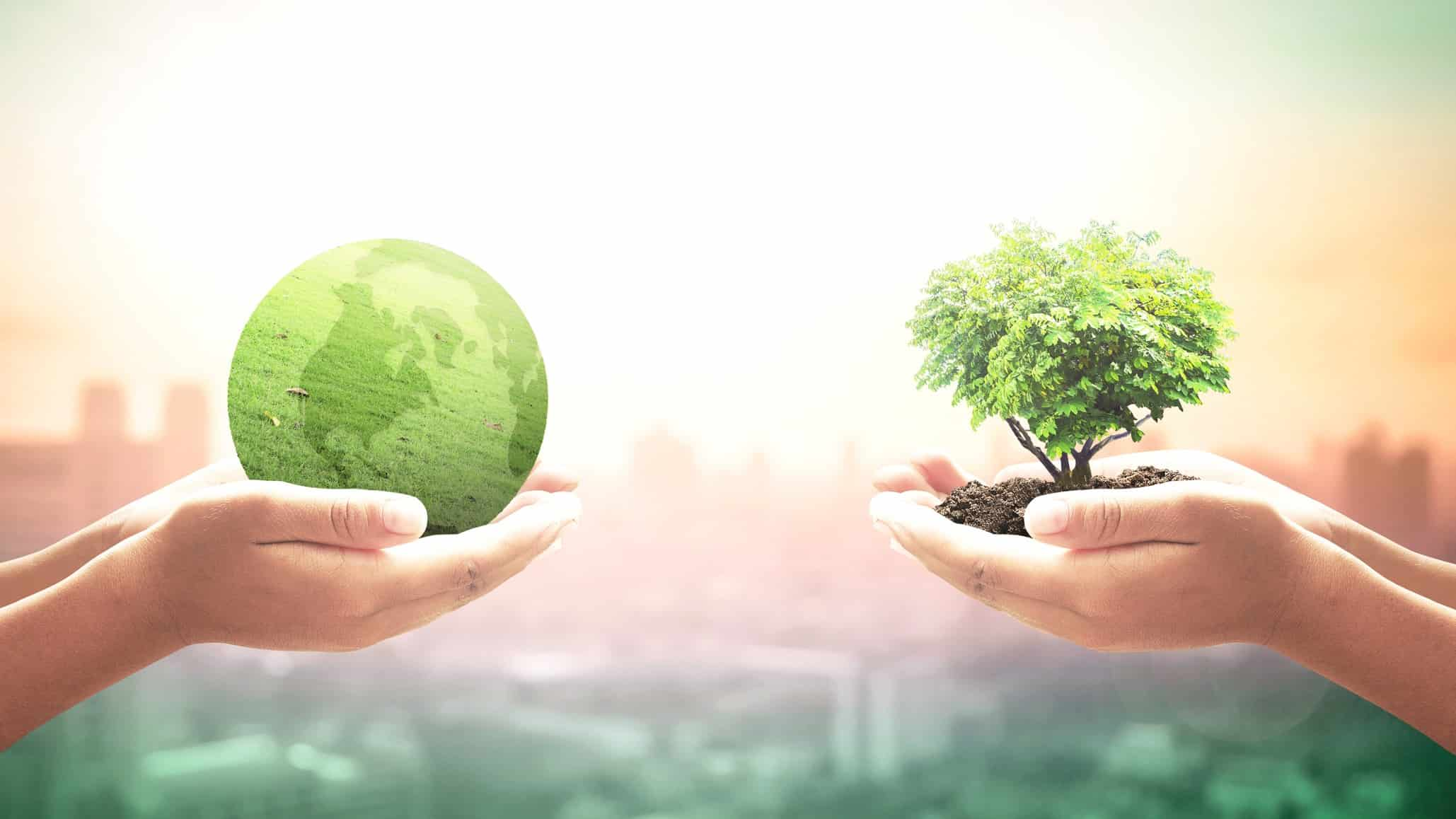 Two outstretched hands holding a green globe and a tree to symbolise ethical investing