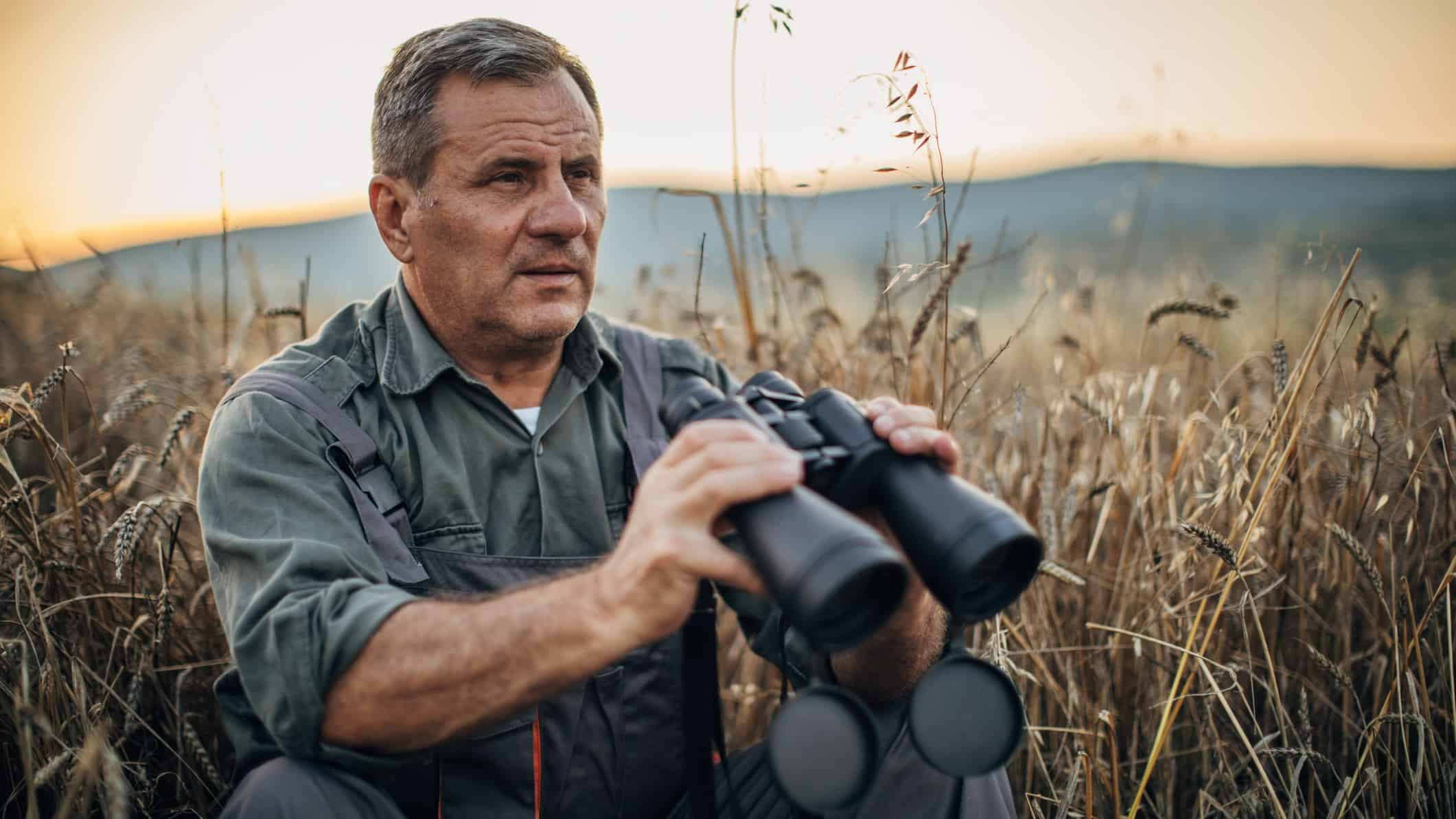man sitting in field of grain with binoculars as if watching asx share price