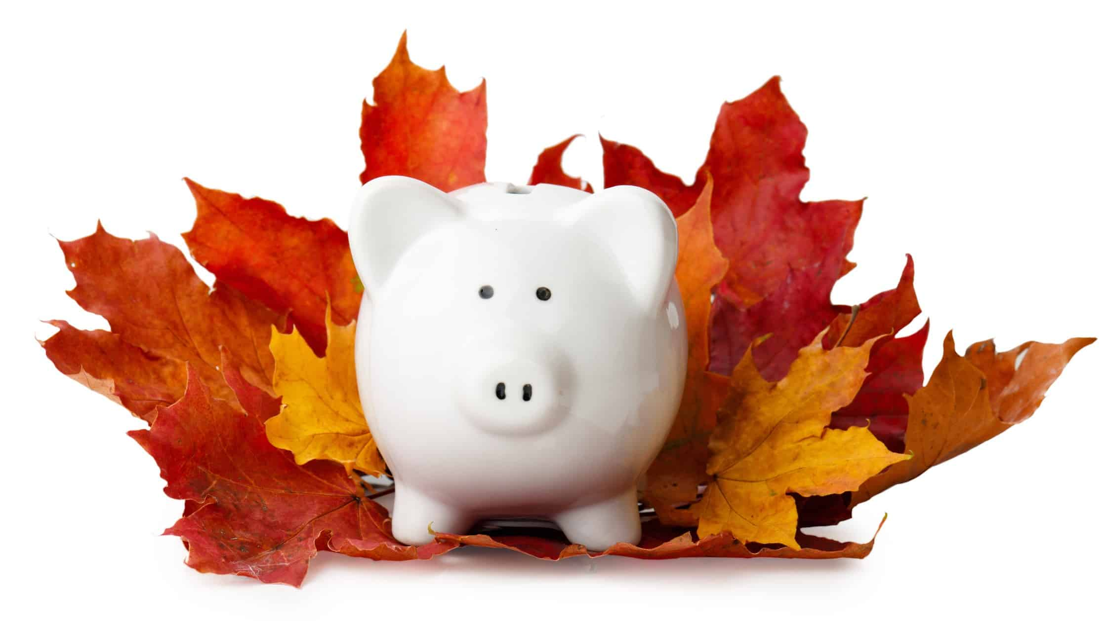 Brest ASX shares represented by piggy bank surrounded by autumn leaves