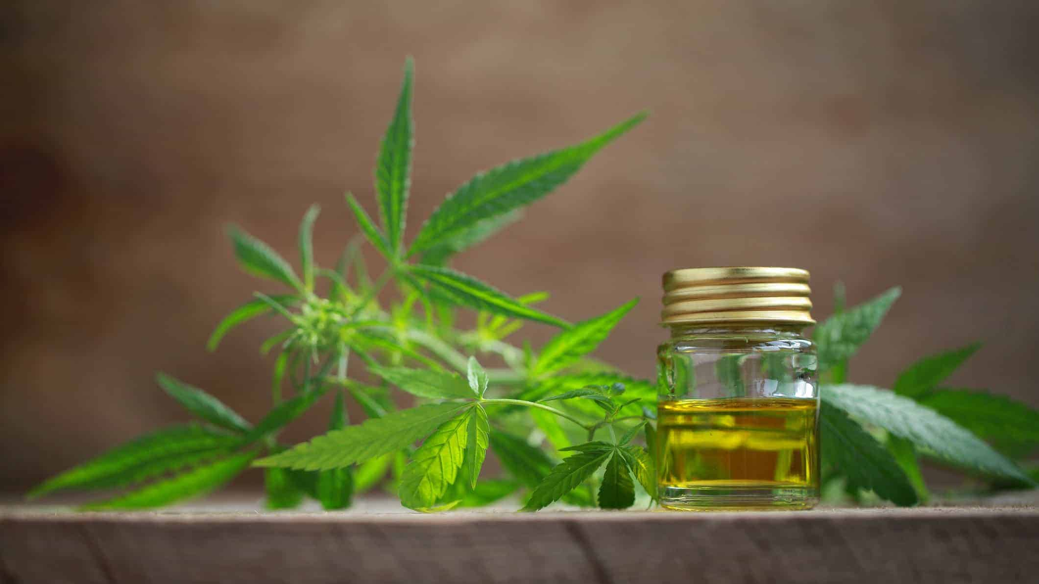 medical marijuana, cannabis, pot, drug, medical